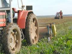 20060103034703-tractor.jpg