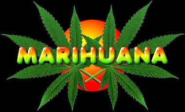 20060320225609-marihuana.jpg