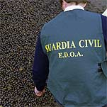 20060401004003-guardia-civil.jpg