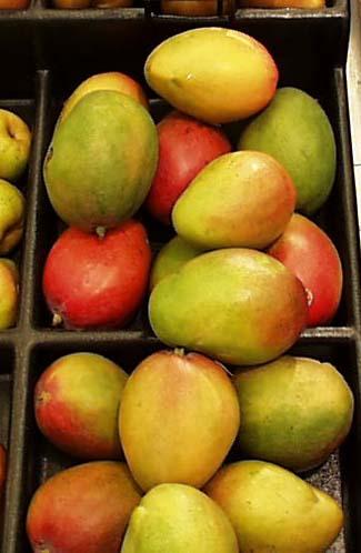 La cosecha de mango se duplicará en la comarca de Río Verde