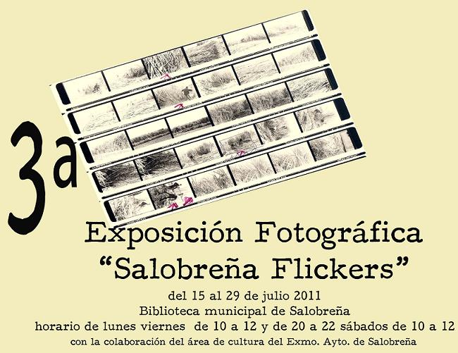 20110712130041-iii-expo-saloflickers.jpg