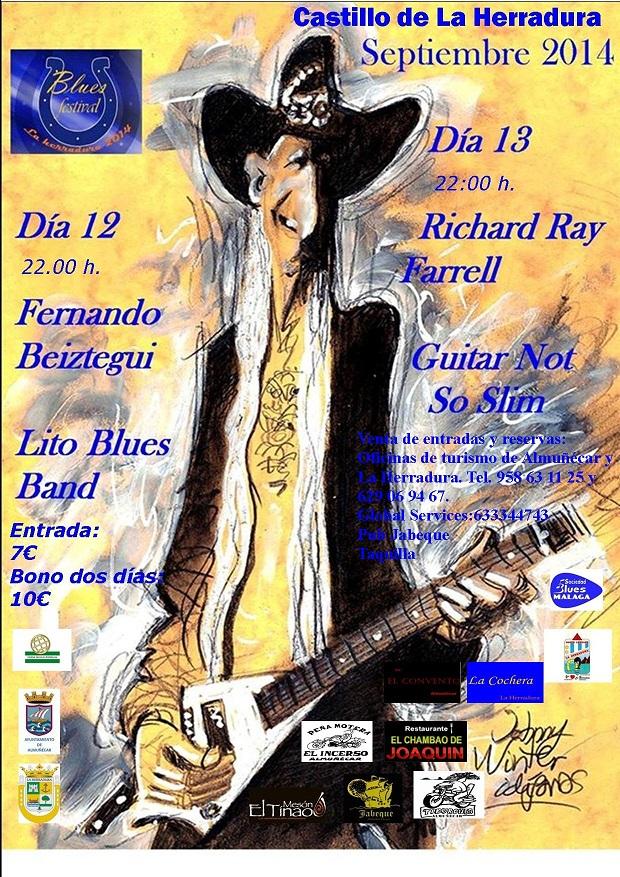 20140908185327-festival-blues-la-herradura.jpg