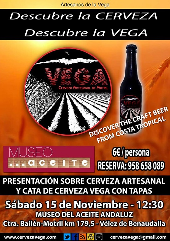 20141114180549-museo-vega.jpg