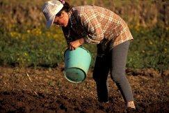 El área de la mujer de COAG denuncia la situación laboral de la mujer en el medio rural