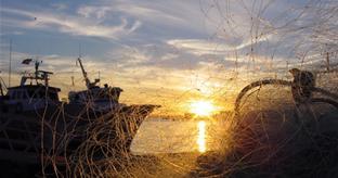 PSOE de Motril organiza una jornada de trabajo con el sector pesquero andaluz