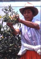 """""""Las mujeres rurales"""" por Teresa López presidenta de FADEMUR"""