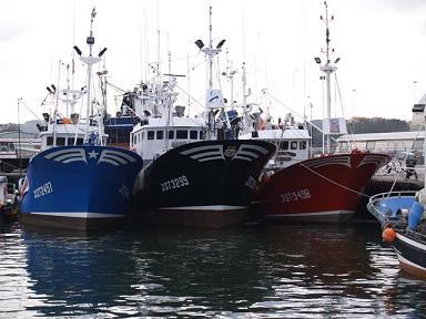 El sector pesquero granadino percibió unos diez millones de euros en el anterior período de ayudas pesqueras de la Unión Europea