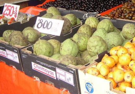 La celebración de las I Jornadas Hortofrutícolas captan el interés del sector agrícola en la Costa