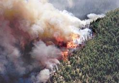 El fiscal solicita 3 años de prisión para el único imputado en el incendio de la sierra de Bodíjar