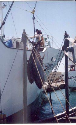 Formación y Empleo del Ayuntamiento de Motril pone en marcha un curso de pintura para embarcaciones marítimas
