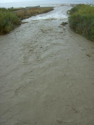 El sediento río Guadalfeo iba hoy jueves caudaloso en su desembocadura por Salobreña