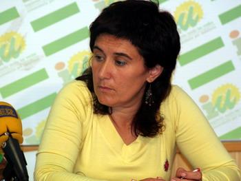 """IU opina que la política social del gobierno municipal es """"estrepitosa"""""""