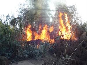 Incendio Los Guájares estable tras arder 200 hectáreas de matorral