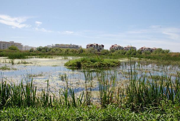 La Reserva Natural Concertada Charca de Suárez, finalista del premio a las Buenas Prácticas Locales por el Clima