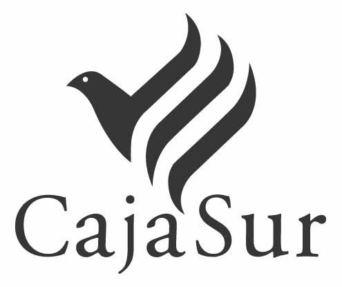 """El constructor que ha denunciado a CajaSur por """"malas prácticas"""" se encierra este martes en una sucursal"""