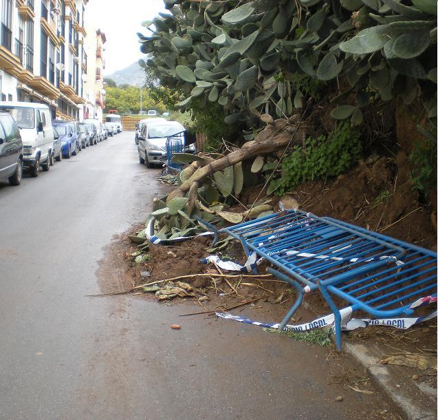 El PSOE pide la limpieza de la calle Florida, donde la caída de un muro provoca dificultades de tráfico e inseguridad para los peatones