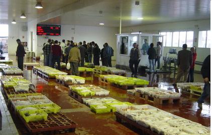 La lonja de Motril vende 354.000 kilos de pescado en el primer trimestre del año lo que supone 1.3 millones de euros