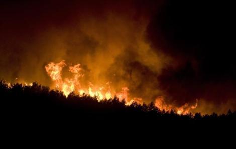 COAG advierte del riesgo de fuego en el monte