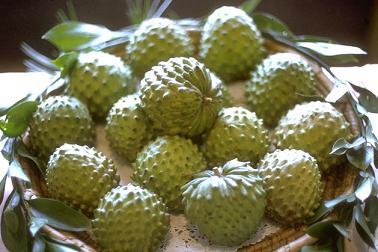Seis meses de prisión por robar diez frutas de chirimoya tasadas en 15 euros