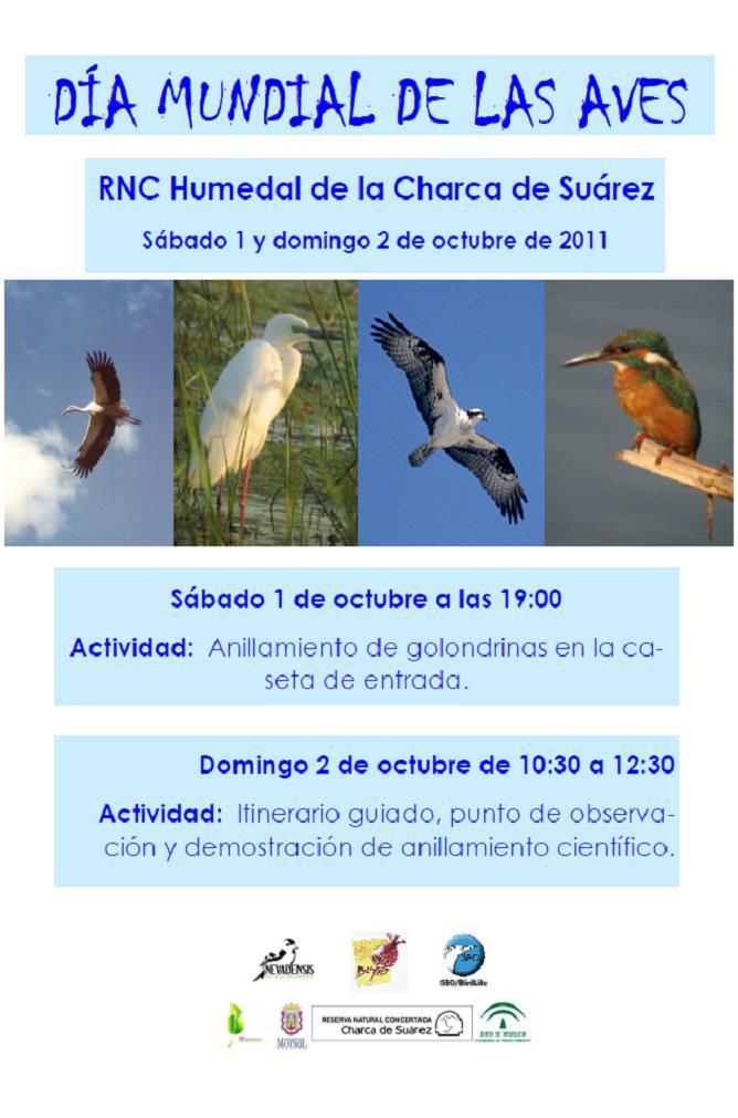Día Mundial de las aves en la Charca de Suárez de Motril