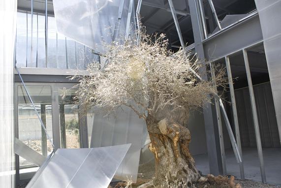 El viento destroza parte de la fachada de la nave agroalimentaria de Tablones (Órgiva)