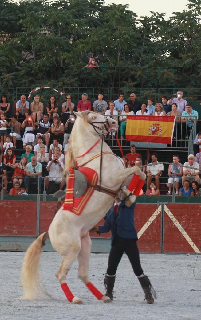 Almuñécar se enamoró del arte de Andalucía a caballo