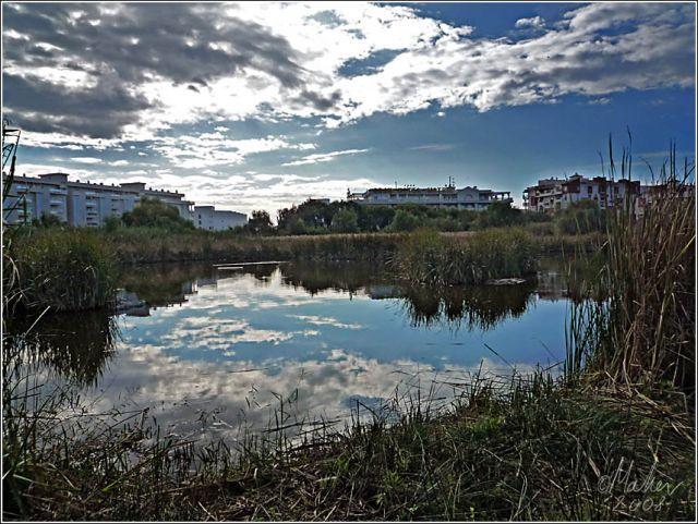 Campaña de mantenimiento del ecosistema de la Charca de Suárez de Motril