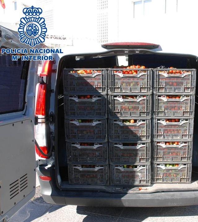 La Policía Nacional lleva a cabo una operación contra el robo de frutos agrícolas de invernaderos