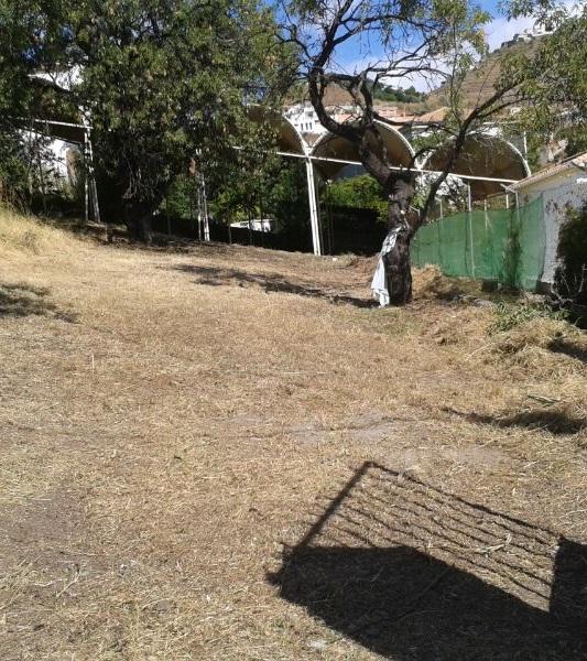 El Ayuntamiento de Almuñécar ha puesto a punto los principales yacimientos arqueológicos