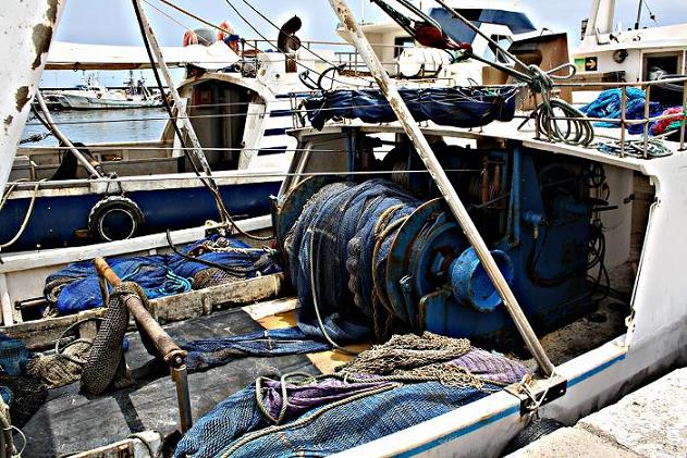 Los pescadores motrileños donan 200 kilos de pescado al 'Banco de Alimentos' para familias necesitadas