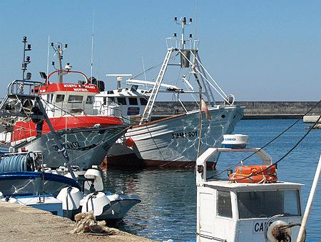 El valor de la producción pesquera subastada en las lonjas andaluzas asciende a 67,74 millones de enero a junio de 2013