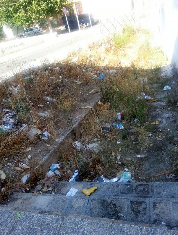 """El PSOE critica la """"lamentable situación de abandono"""" de solares, parques, calles y equipamientos públicos del barrio de las Angustias"""