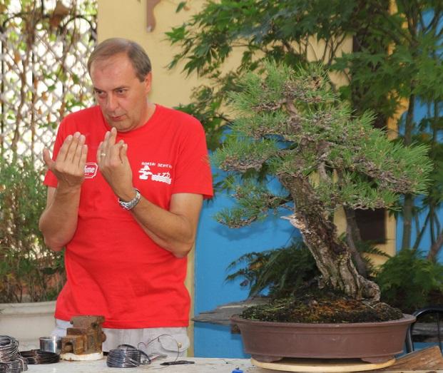 El gran maestro italiano del bonsái  Giorgio Castagneri tuvo muy  buena acogida en Almuñécar