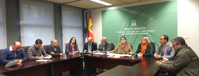 La delegada de Agricultura y técnicos harán una valoración complementaria de los daños de los subtropicales de Almuñécar