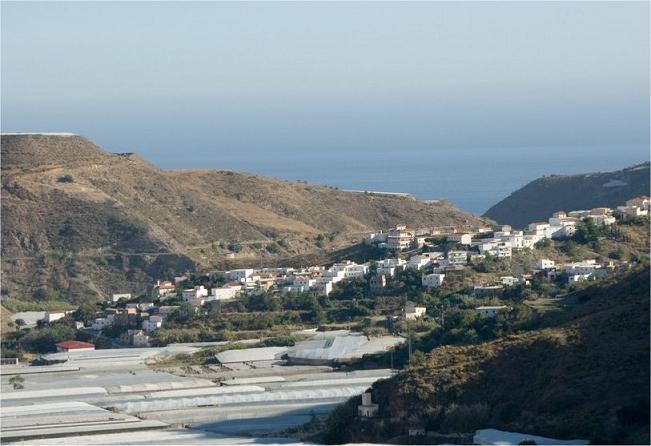Más de 3.200 productores de Agrupaciones de Producción Integrada de Granada reciben 198.472 euros en ayudas
