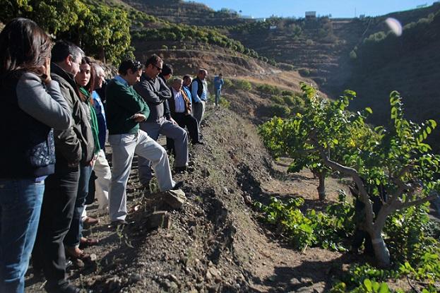 Junta pormete a los agricultores de Almuñécar líneas de financiación y mejora de seguros agrarios