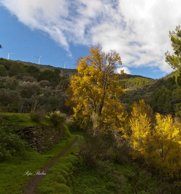 Congelada la declaración de Parque Natural la Sierra de Lújar