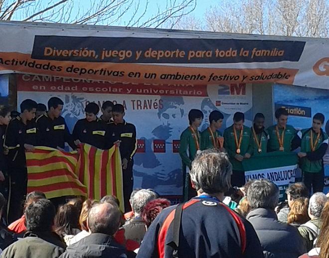 Magníficas actuaciones de los atletas motrileños en cinco campeonatos