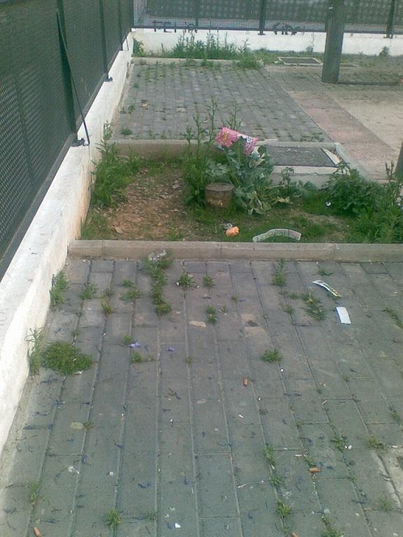"""IU acusa al PP """"de condenar a la marginalidad"""" a algunos barrios Motril"""