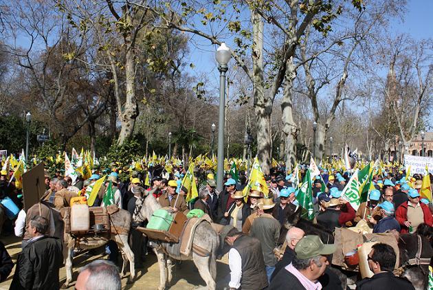 """Miles de agricultores se manifiestan en Sevilla en contra del """"tarifazo"""""""