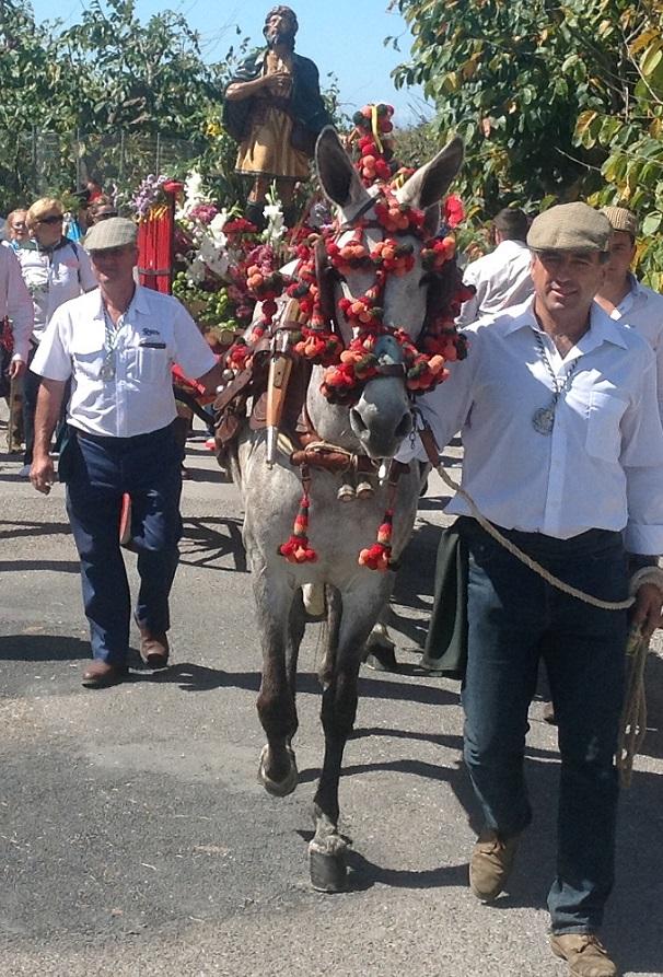 Más de medio centenar de carrozas y casi un centenar de caballistas participaran este domingo en la Romería de  San Isidro de Almuñécar
