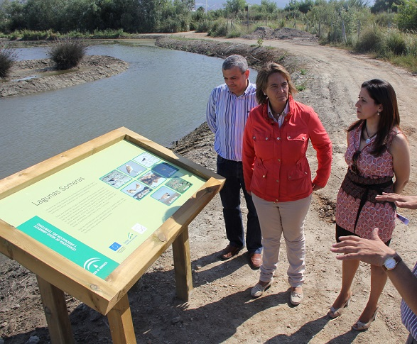 La Charca de Suárez estrena su octava laguna gracias a las labores del Plan de Choque