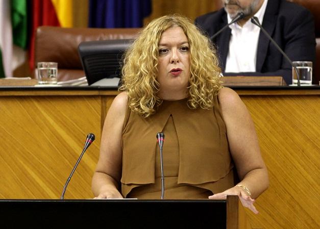 """""""El PSOE logra el apoyo del PP en el Parlamento para reclamar al Gobierno la inclusión de la línea Motril-Melilla entre las de interés público"""""""