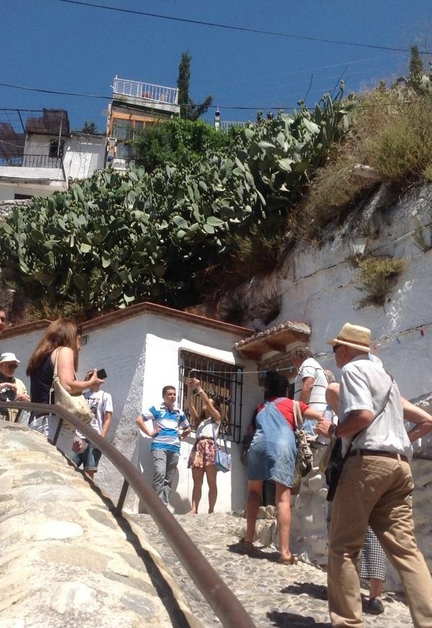 Curso de verano UNED Motril: Granada sueña con el Flamenco