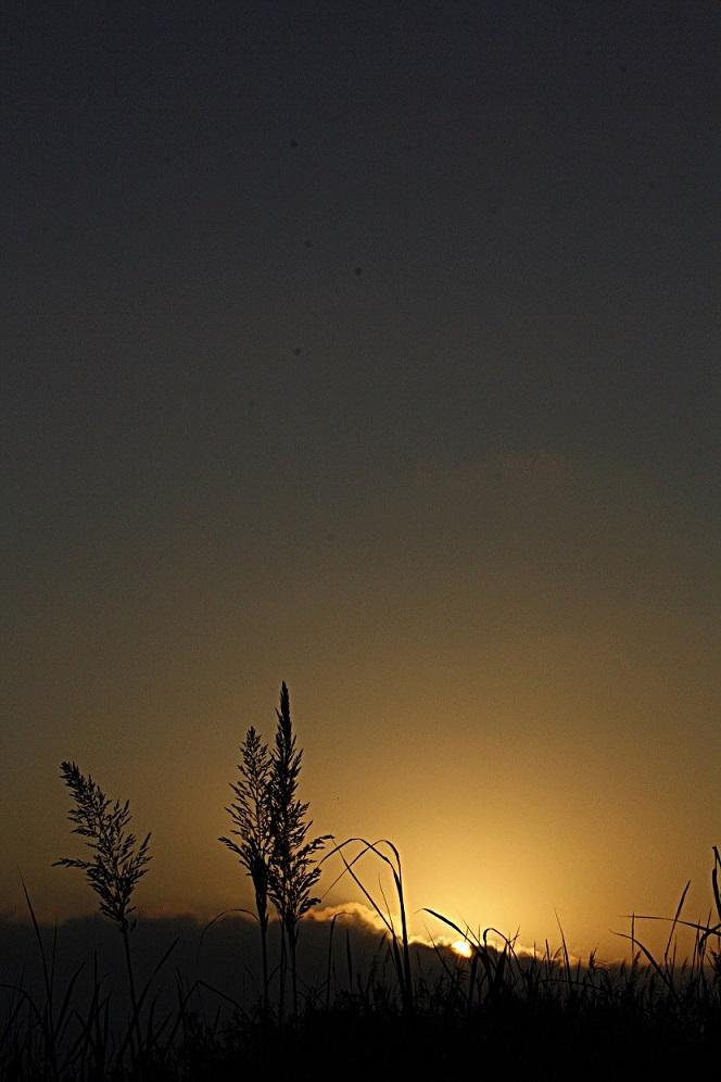Así amanece el primer día de agosto en la Costa Tropical