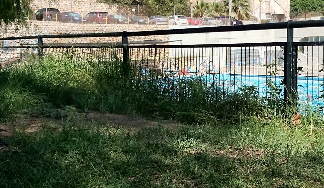 El PA de Motril critica el mantenimiento de los jardines del complejo de la piscina