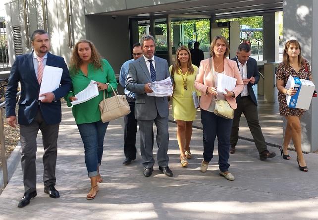 La Costa Tropical presenta 449 alegaciones a la totalidad del Plan Director de Puertos de Andalucía 2012-2020