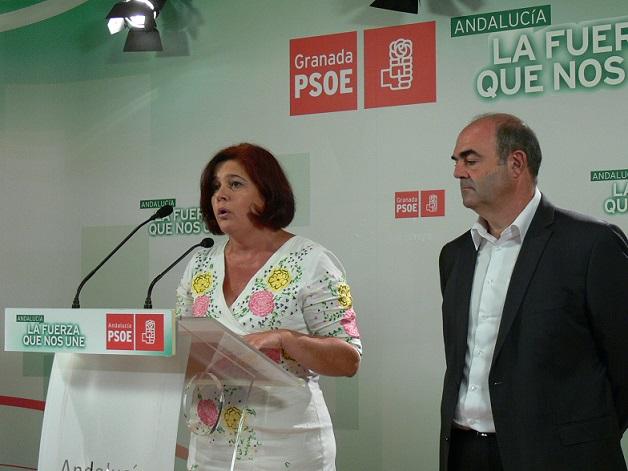 """El PSOE acusa al Gobierno de """"dopar"""" a los puertos de Málaga y Almería mientras """"hunde"""" al de Motril"""