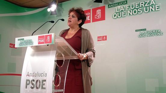 El PSOE inicia este lunes el proceso de primarias para elegir candidatos en Granada, Motril, Almuñécar y Loja