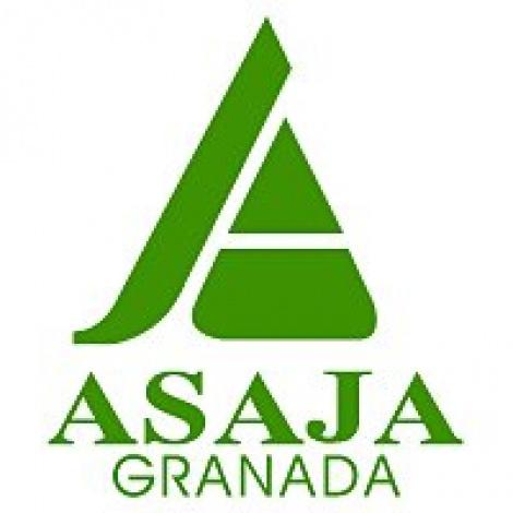 La Junta de Andalucía se excede al retirar la calificación de OPFH a la SAT La Caña
